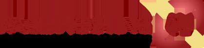 Page Hosting 4U LLC. logo